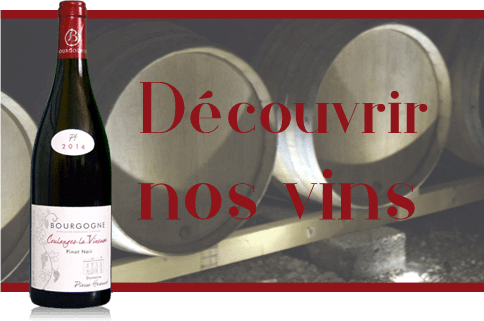 Vin de Coulanges et Irancy